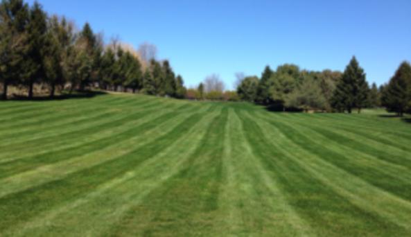 Stone Creek Golf Club 6