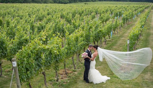 Wedding at Bedell Cellars