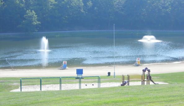 Wilcox - lake