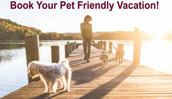 pet friendly vacation