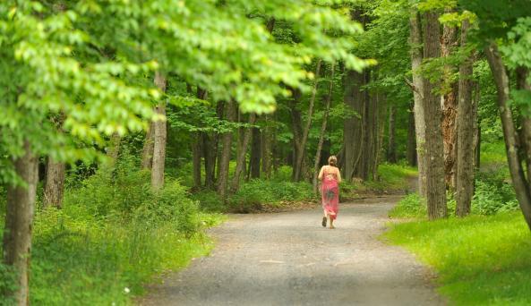 Menla Mountain Retreat Path