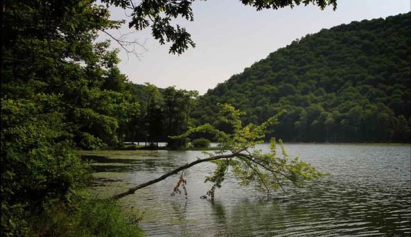 Beautiful Alma Pond