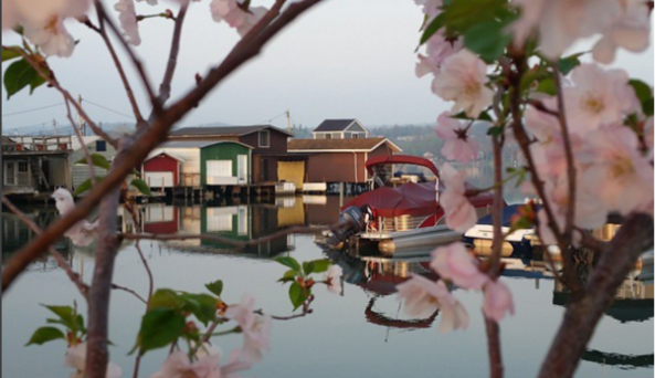 boathouses-canandaigua-exterior-summer-flowers-pier.PNG