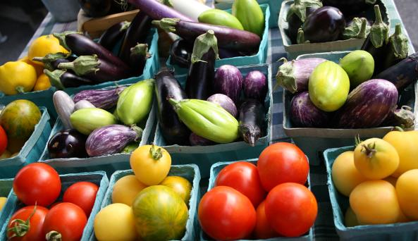 farmers-market-canandaigua-local-farmers