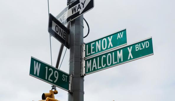 Experience: Harlem