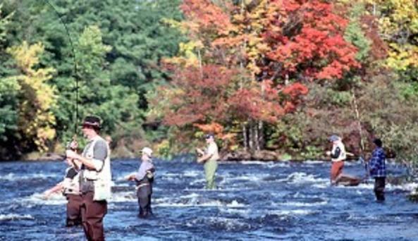 salmon river 2