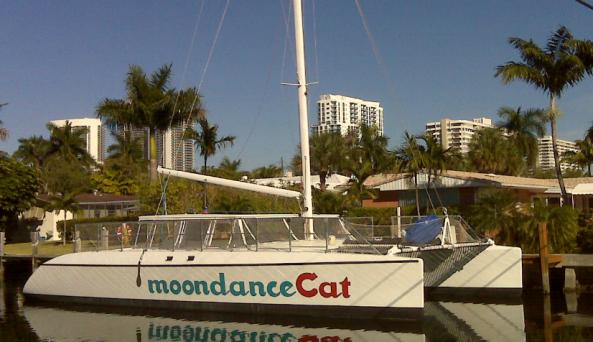 moondancecat image
