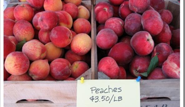 Rhinebeck Farmers Market - Mead Peaches