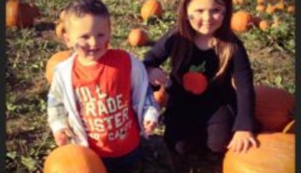 Pumpkin Picking at Mindard's
