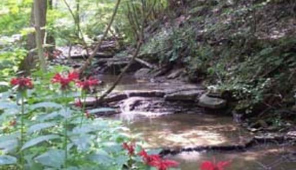 Slader Creek