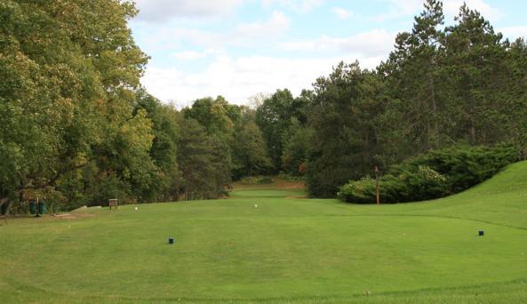 winged-pheasant-manchester-golf-fairway
