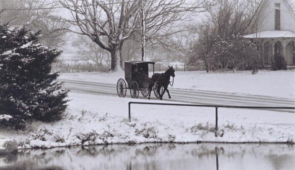 Horse and Buggy in winter.jpg
