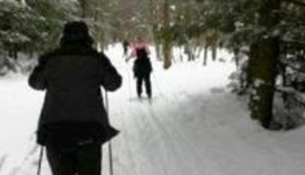 Cove Cottages X Country skiiing