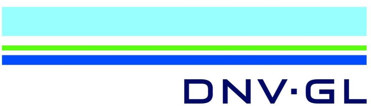 DNV Healthcare Logo