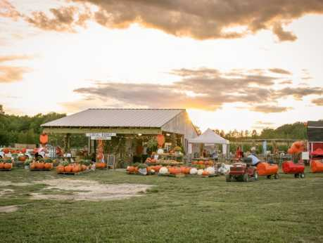 Hickory Ridge Fall Pumpkins