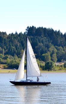 Fern Ridge Sail Boat by Sally McAleer