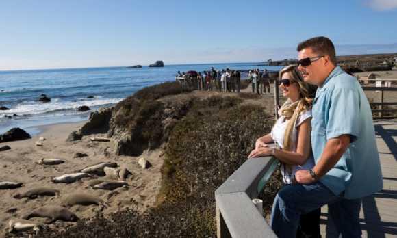 RPSS_17 Ragged Point San Simeon Couple Viewing Elephant Seals.jpg