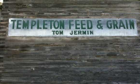 feed and grain.jpg