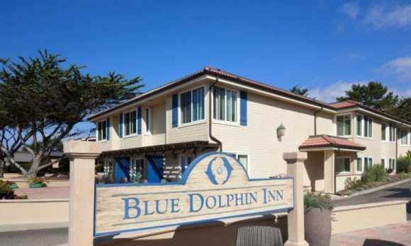 Blue-Dolphin-1112_3039-3045 SMALL.jpg
