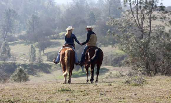 Horses at HorseTail Ranch