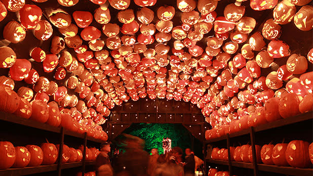 The Great Jack O'Lantern Blaze - Photo Courtesy of Historic Hudson Valley