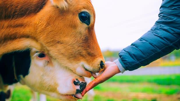 Hull O Farms - Photo by Beautiful Desinations