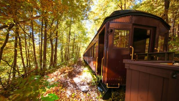 Fall foliage along the Catskill Mountain Railroad on Mt. Tremper