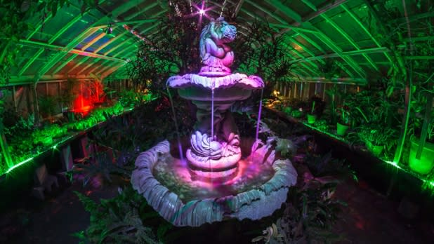 Lumagination at the Buffalo Botanical Gardens