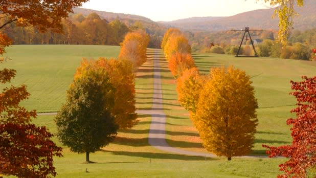 Fall foliage at the Storm King Art Center
