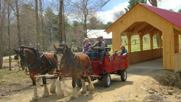 Horse cart rides at Thurman Fall Farm Tours