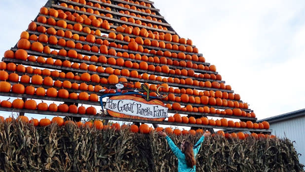 The Great Pumpkin Farm Fall Festival