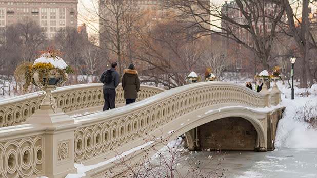 Central Park Bridge in Winter