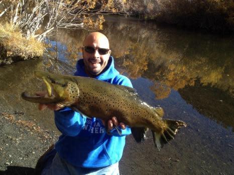 20 pound Brown Rush Creek