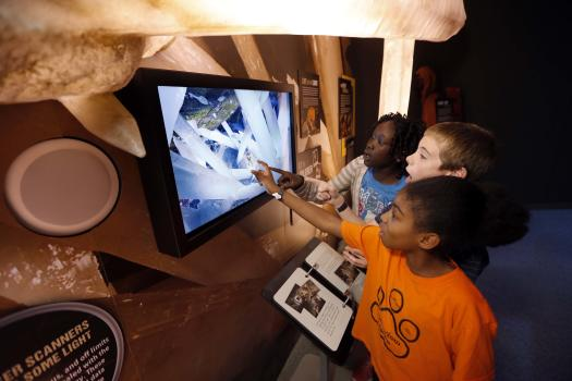 Earth Explorers at Manitoba Museum