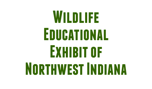 Wildlife Educational Exhibit NWI logo