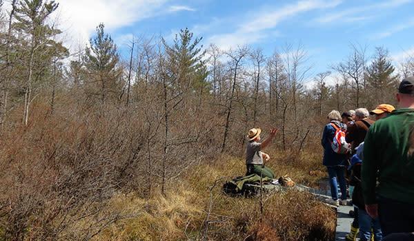 People Hiking Pinhook Bog Ranger Hike