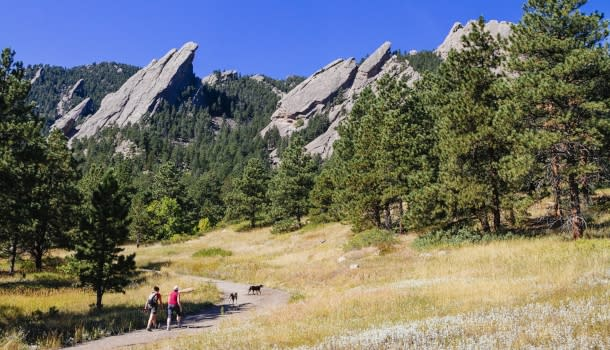 Flatirons people hiking with dogs