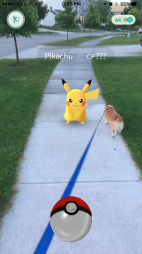 Catching a Pikachu in Grand Rapids