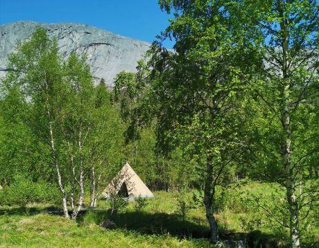 Sámi Safari Camp - Close to nature, yourself and Sami culture
