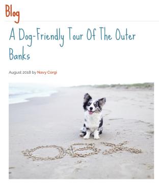 Blog - Dog