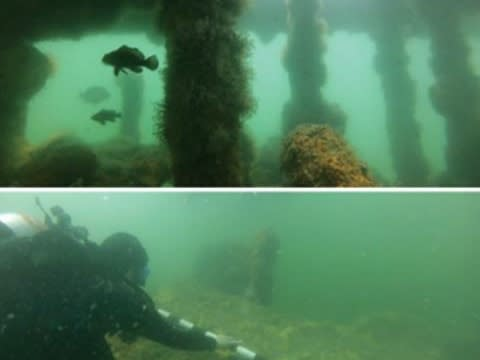 Collection KB Dive Site