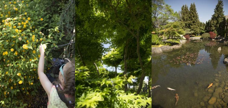 HD12 - Matt's Photos