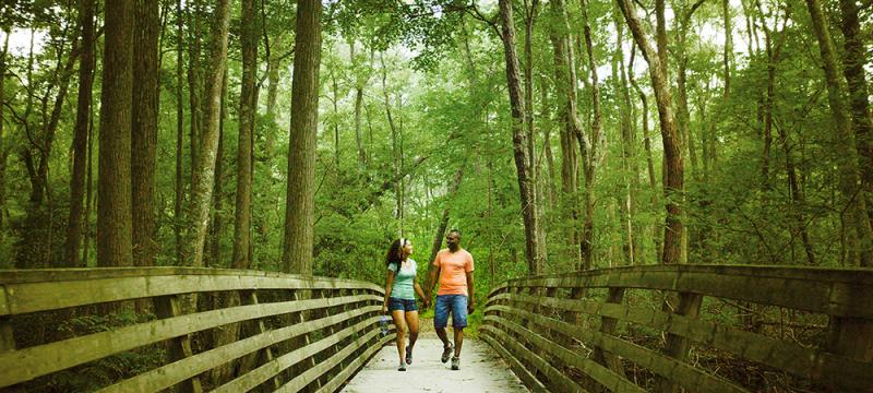 First Landing State Park Hiking