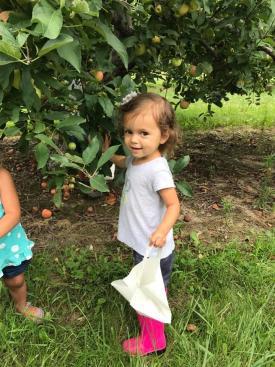 Beasley's Orchard first U-pick little girl