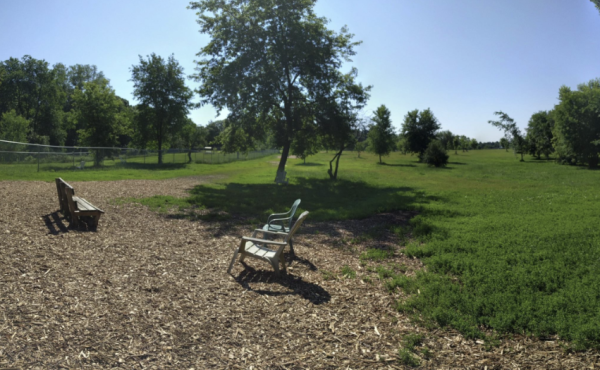 Otter Creek Dog Park