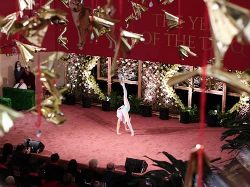 South Coast Plaza Lunar New Year Dancer