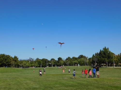 Flying kites at Bill Barber Community Park