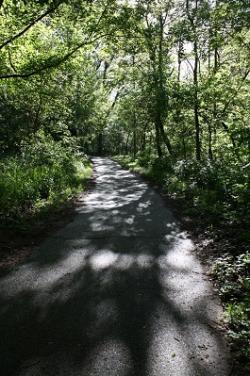 Arbuckle Acres Park trail