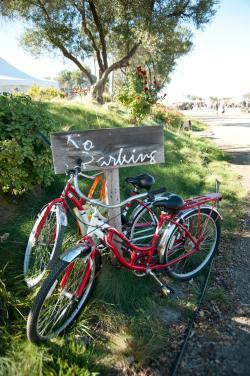 wine country bikes