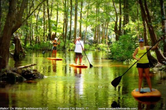 WOW river tour